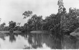 AFRIQUE NOIRE - COTE D'IVOIRE - ABIDJAN : Rivière AGNEBY - CPSM Dentelée Noir Blanc Format CPA 1953 - Black Africa - Ivory Coast