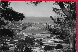CARTOLINA VG ITALIA - TRIESTE - Panorama - 10 X 15 - ANN. 195? - Trieste