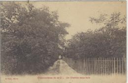 CPA Dept 94 CHENNEVIERES SUR MARNE - Chennevieres Sur Marne