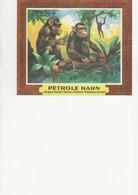 BUVARD - PUBLICITE PETROLE HAHN - Animales