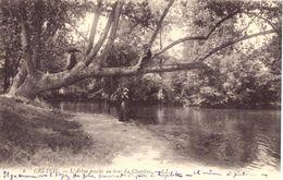 Créteil L'arbre Penché Au Bras Du Chapitre - Creteil