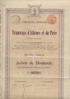 ACTION DE DIVIDENDE - COMPAGNIE DES TRAMWAYS D'ATHENES ET DU PIREE  - 1900 - Chemin De Fer & Tramway