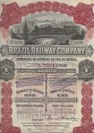 BRAZIL RAILWAY COMPAGNIE (COMPAGNIE CHEMIN DE FER AU BRESIL )ACTION DE 100 DOLLARS -1910 - Chemin De Fer & Tramway