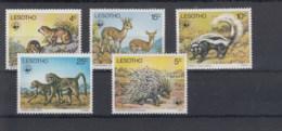 Lesotho Michel Cat.No.   Mnh/** 228/232 Wwf - Lesotho (1966-...)