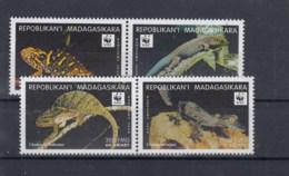 Madagaskar Michel Cat.No.   Mnh/** 2313/2316 Wwf - Madagascar (1960-...)