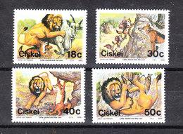 Ciskei   -  1989. Leone A Caccia. Hunting Lion. Complete MNH Series - Raubkatzen