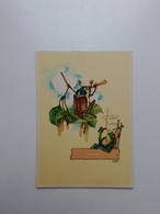 Insect. Frog. Fantasy. DDR Postcard. Tbr-181 - Insects
