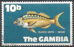 Gambia, 1971 Yellowtail Snapper, 10b # S.G. 275 - Michel 252 - Scott 257 USED - Gambia (1965-...)