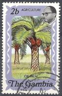 Gambia, 1973 Oil Palms, 2b # S.G. 304 - Michel 281 - Scott 290 USED - Gambia (1965-...)