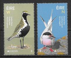 Irlande 2019 Timbres Neufs ** Europa Oiseaux - 1949-... Republic Of Ireland