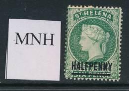 ST HELENA, 1884 ½d  Unmounted Mint - Saint Helena Island