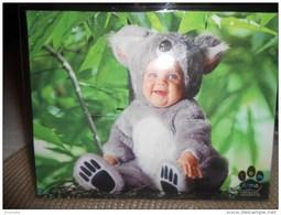 Enfants De TOM ARMA - Bébé  Déguisé En  Koala    !! - Non Classés