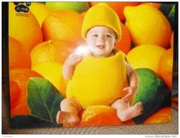 Enfants De TOM ARMA - Bébé  Déguisé En  Citron   !! - Non Classés