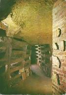 Roma (Lazio)  Catacomba Di Santa Priscilla, Galleria Dell'Arenario Al 1° Piano - Roma (Rome)