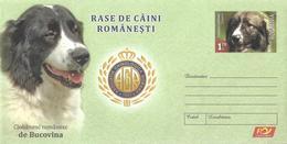 2019 - ROMANIAN DOGS - 2 Postal Stationery - Postal Stationery
