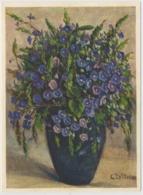 Gamander Ehrenpreis - Fleurs