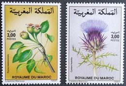 Morocco 1991 Flowering Plants - Morocco (1956-...)