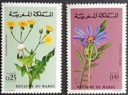 Morocco 1972 Flowers - Morocco (1956-...)