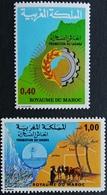 Morocco 1978 Promotion Of The Sahara - Morocco (1956-...)