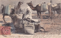 SCENES ET TYPES. UN FOUDOUCK, LL. COLORISE. CIRCULEE 1907 A ROSARIO, ARGENTINE - BLEUP - Scene & Tipi
