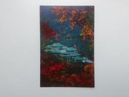 Exhibition Of Friendship Between Peoples   North Korea. Pja9-6 - Korea, North