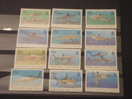 BRITISH OCEAN - 1994 PESCI 12 VALORI - NUOVI(++) - Stamps