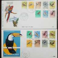 O) 1966 SURINAM, BIRDS, FDC XF - Surinam
