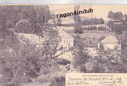 CPA - LUXEMBOURG -ENVIRONS De MONDORF- HEINRICHSMULHLE Près D' ALTWIES - Edit NELS Série 4 N° 4 - 1904 - BEL ETAT - Mondorf-les-Bains