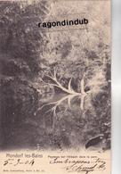 CPA - LUXEMBOURG - MONDORF-les BAINS - PAYSAGE SUR L' ALBACH DANS LE PARC - Edit Nels N° 17 Série 3 - 1904 Bel état - Mondorf-les-Bains