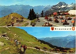 BRAUNWALD Bergstation Der Sesselbahn Gumen Berghaus Gumen Kühe - GL Glaris