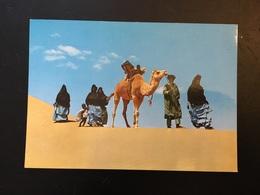 Marruecos Sahara - Sonstige