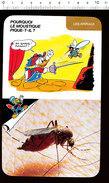 Humour Moustique Avec Abdomen Gonflé De Sang / Paludisme Insecte épée Mousquetaire Escrime Sport  D36 - Old Paper