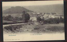 Ongebruikte Postkaart Van Herbeumont La Route De St. Médard NELS SERIE NR. 40 NR. 195 ; Staat Zie Scan ! - Herbeumont