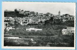 CPSM TUNISIE CARTHAGE Vue De Sidi Bou Said - Tunisie