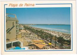 Mallorca - El Arenal  - Playas De Palma - Piscina / Swimming-pool - (Espana/Spain) - Mallorca