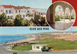 ALGERI - CLUB DES PINS - EMIRO ABDELKADER - MOSCHEA KETCHAQUA - Algeri