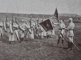 POLEN POLAND POLOGNE - Military - FLAG - Przysiega Na Sztandar Naczelnego Wodzza - Jenerala HALLERA 1918 - Pologne