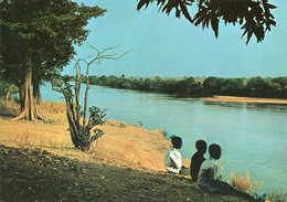 Guinea - Kankan - Au Bord Du Fleuve Milo - Guinea