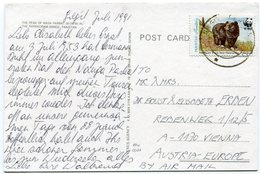 Pakistan - Postcard - Carte Postale - Pakistan