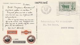 PUB MARINOL PLASMARINE SUR IMPRIME PINGOUIN FALKLAND ISLANDS 1952 POUR BEZIERS - Falkland
