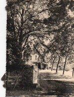 95Eb  Photo 24 Chateau De Saint Jean De Colle Cole Prés Perigueux En 1955 - Périgueux