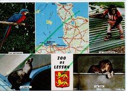 LESSAY LE  ZOO  DE LESSAY - Frankreich