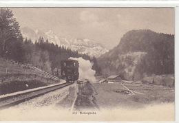Brünigbahn - Nicht So Häufige Ansicht - 1905          (P-166-71102) - Trains