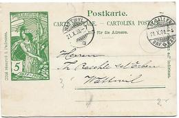 117 - 81 - Entier Postal UPU Avec Cachets à Date St Gallen Et Wattwyl 1900 - Postwaardestukken