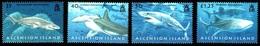 (018) Ascension  Fish / Poissons / Fische / Vissen / Sharks / Requins / Haie **  / Mnh  Michel 1033-36 - Ascension