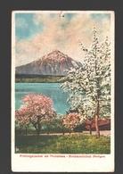 Merligen - Frühlingszauber Am Thunersee - Birnbaumblühet - 1920 - BE Berne