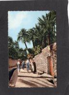 86650    Africa,   Rue  De La Grande  Seguia,  NV - Unclassified
