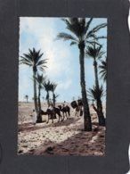 86652    Africa,  Dans Les Palmiers,  NV - Unclassified