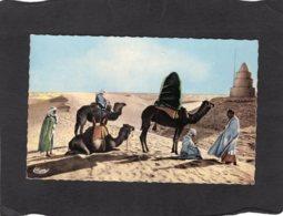 86657    Africa,   Halte  Au  Desert,  NV - Unclassified