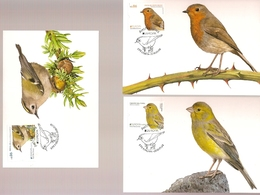 Portugal & Maximum Postcards, CPTE Europe, National Birds, Lisbon 2019 (7717) - Cartoline Maximum
